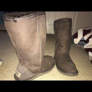 Talk Chocolate Ugg Boots